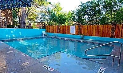 Pool, Bent Tree, 1