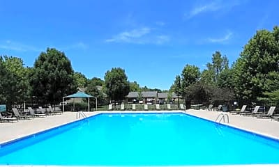 Pool, The Homestead, 1
