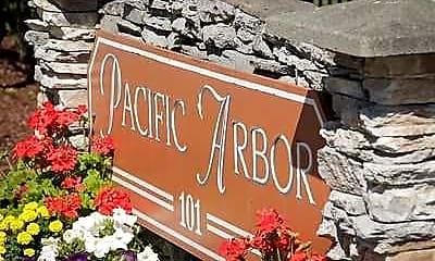Pacific Arbor, 2