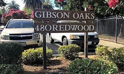 Gibson Oaks, 1