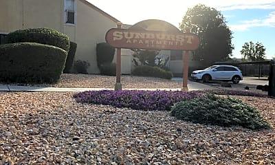Sunburst, 1