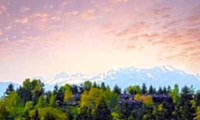 View, Los Altos, 2