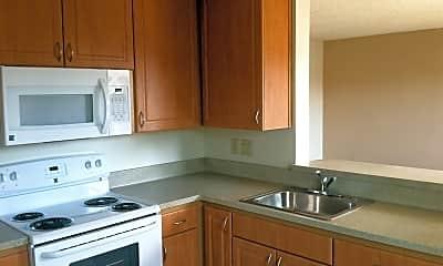 Kitchen, 501 Plum St, 0