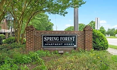 Spring Forest, 2