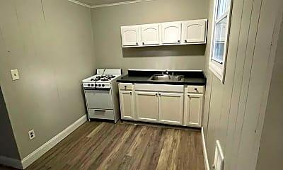 Kitchen, 281 Spring St, 1