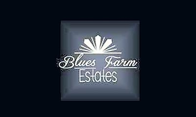 Blues Farm Estates, 1