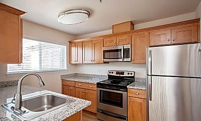 Kitchen, Millennium Park Apartments, 1