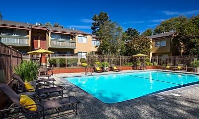 Pool, 217 Richmond Dr, 1