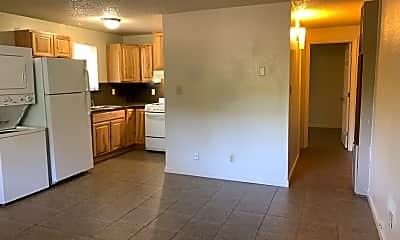 Kitchen, 18 Vine St, 2