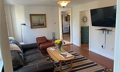 Living Room, 267 Spring St, 1