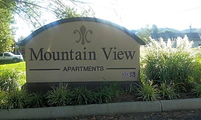 Mountain View, 1
