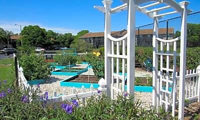 Pool, Trellis At The Lakes, 2