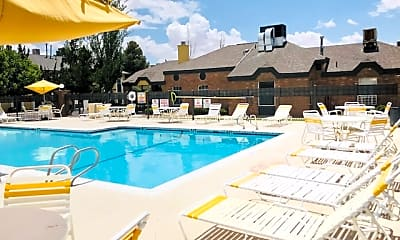 Pool, The Bartlett, 0