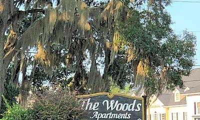 The Woods Of Savannah, 1