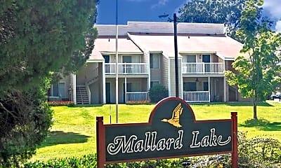 Mallard Lake, 1