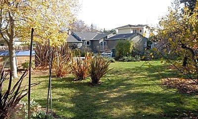 Back yard.jpg, 805 Sycamore Dr, 2