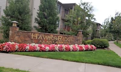 Hawk's Ridge, 1