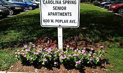 Carolina Spring, 1
