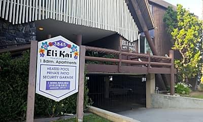 Eli Kai, 1