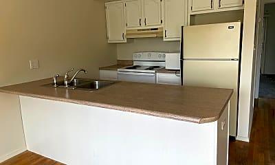 Kitchen, 302 S Cedar St, 2