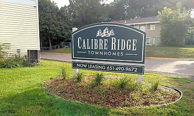 Calibre Ridge Townhomes, 1