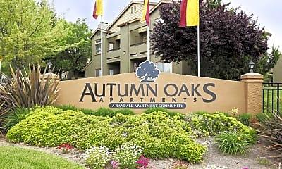 Autumn Oaks, 2