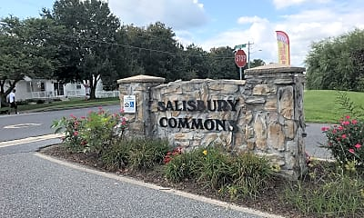 Salisbury Commons, 1
