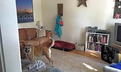 Living Room, 139 Morse St, 1