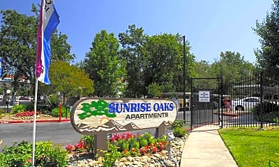 Landscaping, Sunrise Oaks, 0