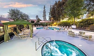 Pool, Sycamore Lane, 2