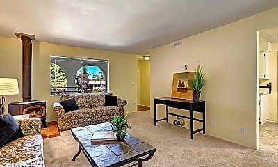 Living Room, 17211 NE 45th St, 0