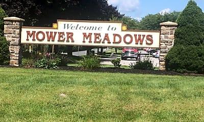 Mower Meadows, 1