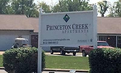 Princeton Creek, 1