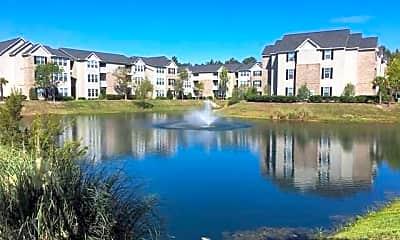 Lake, Rice Creek, 0