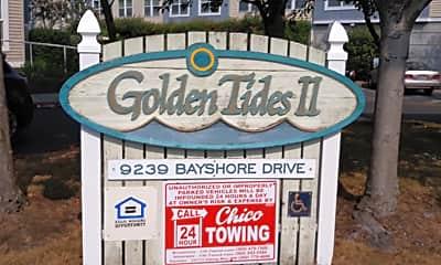 Golden Tides ll, 1