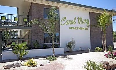 Community Signage, Carol Mary, 2