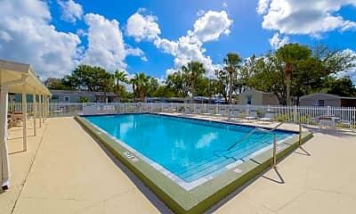 Pool, Kings Manor, 0