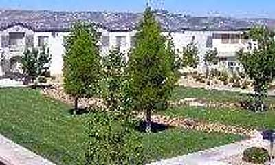 Horizon Pines, 1