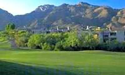 The Greens At Ventana Canyon, 1
