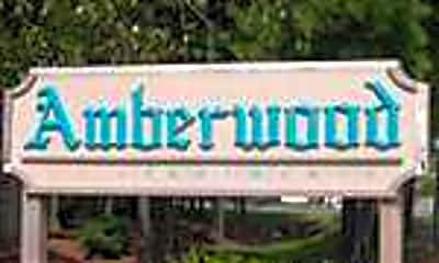 Amberwood, 1