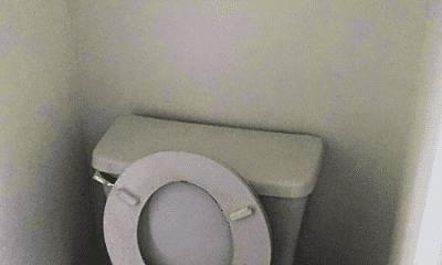Bathroom, 303 Cello Cir, 2