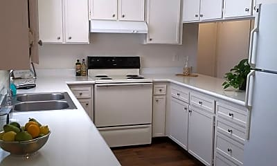 Kitchen, 217 Orlando St, 1