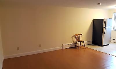 Living Room, 9 Chester St, 1