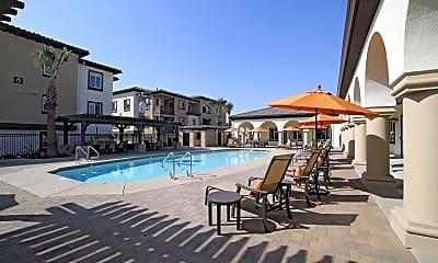 Pool, Paloma Apartment Homes, 0