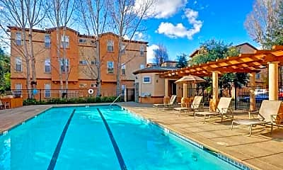 Pool, Renaissance, 1