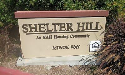 Shelter Hill, 1