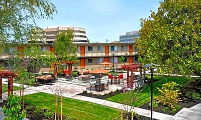 Courtyard, Alterra Walnut Creek, 1