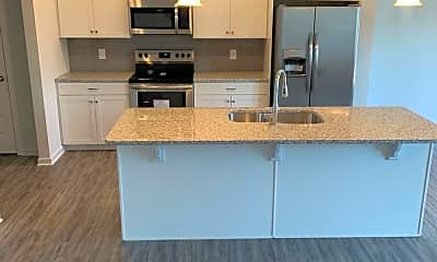 Kitchen, 145 Madison Bend 9, 1