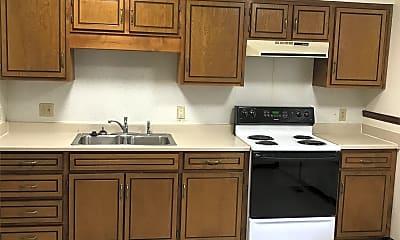 Kitchen, 201 Vilas St, 1
