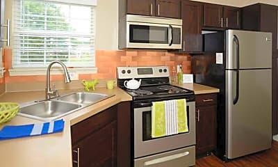 Kitchen, Austin Springs, 1